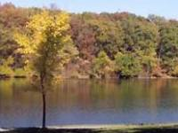 Lake at Rogers-Lakewood Park